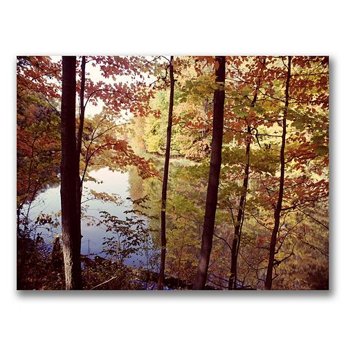 """A Secret Pond"" Canvas Wall Art by Kurt Shaffer"