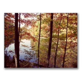 A Secret Pond Canvas Wall Art by Kurt Shaffer