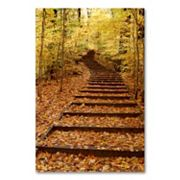 'Fall Stairway' 24' x 18' Canvas Wall Art by Kurt Shaffer