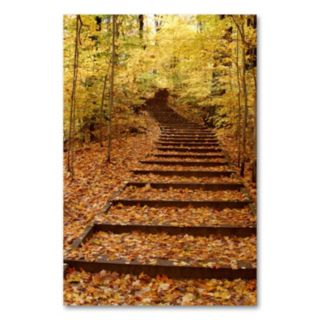 Fall Stairway 24 x 18 Canvas Wall Art by Kurt Shaffer