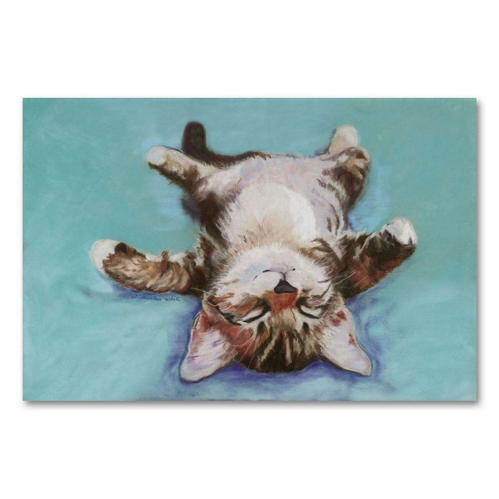 ''Little Napper'' Canvas Wall Art by Pat Saunders-White