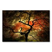 'Japanese' 22' x 32' Canvas Wall Art by Philippe Sainte-Laudy