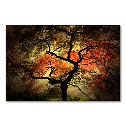 """Japanese"" 22"" x 32"" Canvas Wall Art by Philippe Sainte-Laudy"