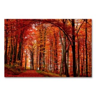 The Red Way 30 x 47 Canvas Wall Art by Philippe Sainte-Laudy