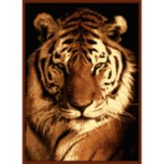 "United Weavers Legends Tiger Portrait Rug - 5'3"" x 7'2"""