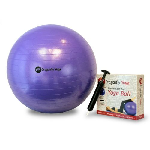 Dragonfly Premium 25.6-in. Anti-Burst Yoga Ball with Pump