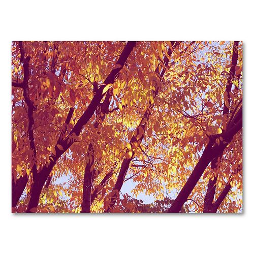 30'' x 47'' Trees Canvas Wall Art by Ariane Moshayedi