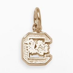 LogoArt South Carolina Gamecocks 14k Gold Logo Charm