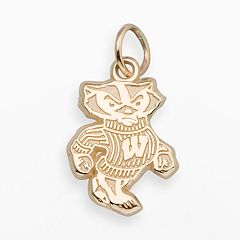 LogoArt Wisconsin Badgers 14k Gold Logo Charm