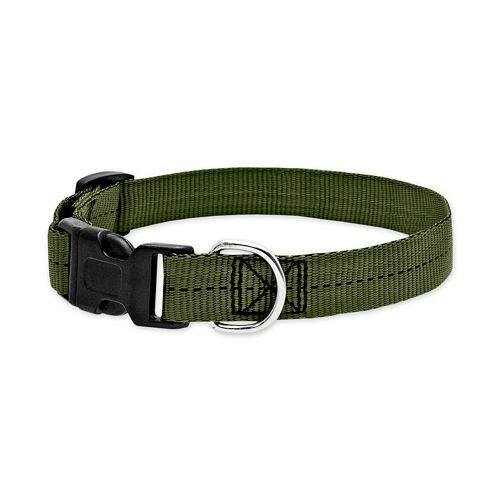 Ruffin' It Para Web Small Dog Collar