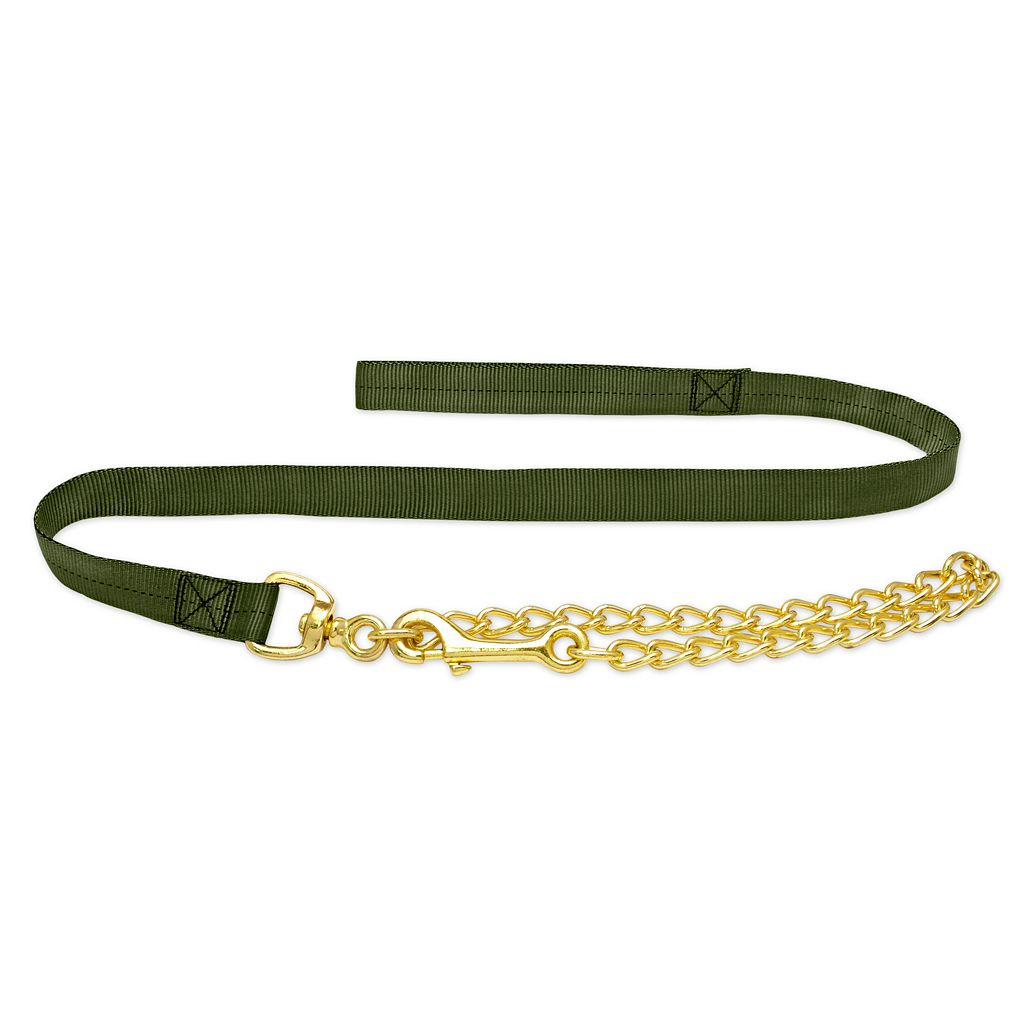 Ruffin' It Para Web 5-ft. Green Leash with Chain