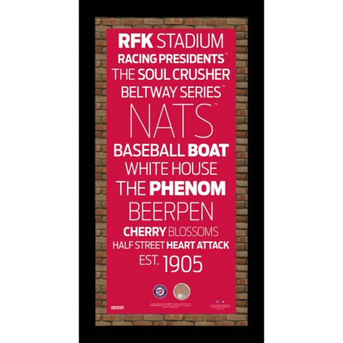 """Steiner Sports Washington Nationals 19"""" x 9.5"""" Vintage Subway Sign with Authentic Field Dirt"""
