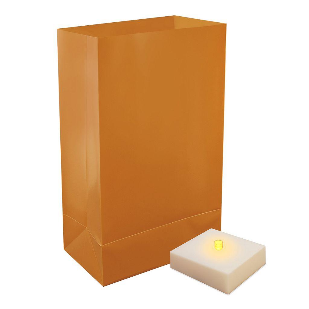LumaBase Indoor / Outdoor Timer LumaLite & Luminaria Bag 6-piece Set