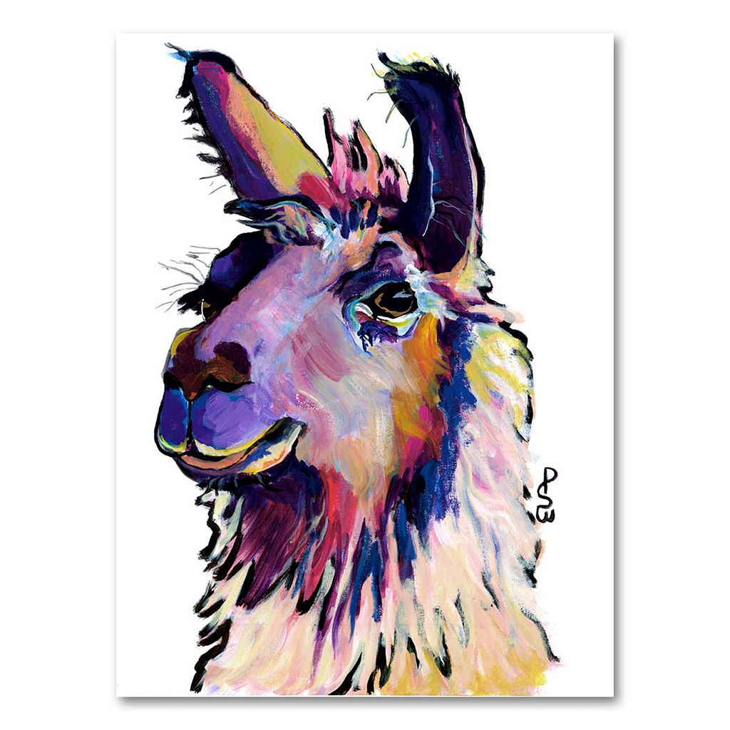 47'' x 35'' ''Fabio'' Canvas Wall Art by Pat Saunders-White