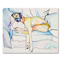 35'' x 47'' ''Sleeping Beauty'' Canvas Wall Art by Pat Saunders-White