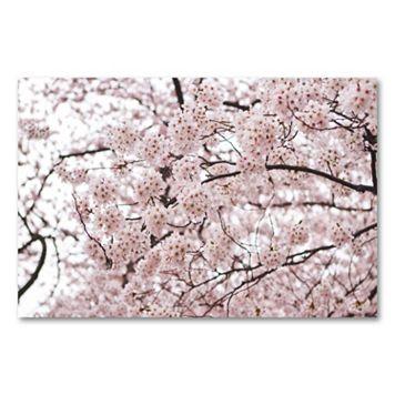 16'' x 24'' ''Cherry Blossoms'' Canvas Wall Art by Ariane Moshayedi