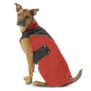 PetRageous Designs Tacoma Waterproof Dog Coat - Small