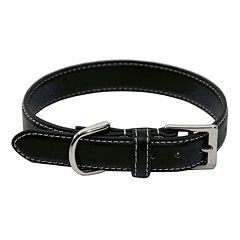 Royce Leather Perry Street Dog Collar - Small