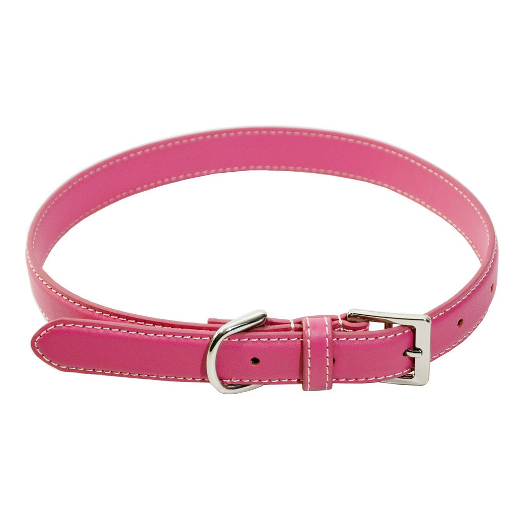 Royce Leather Perry Street Dog Collar - Medium