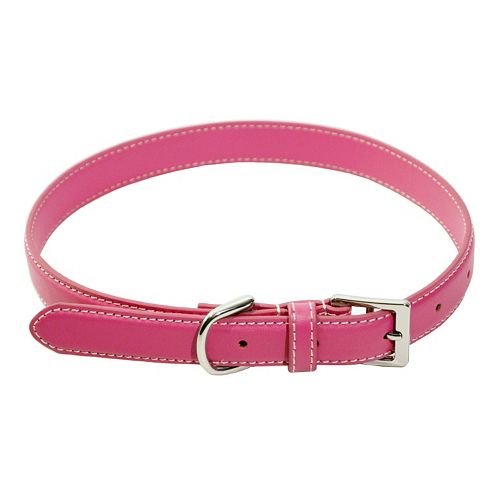 Royce Leather Perry Street Dog Collar - Medium