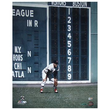 Steiner Sports Carl Yastrzemski 16'' x 20'' Signed Photo