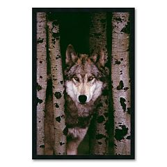 'Gray Wolf' Framed Wall Art