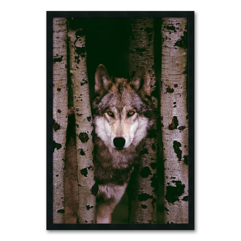 Gray Wolf Framed Wall Art, Black