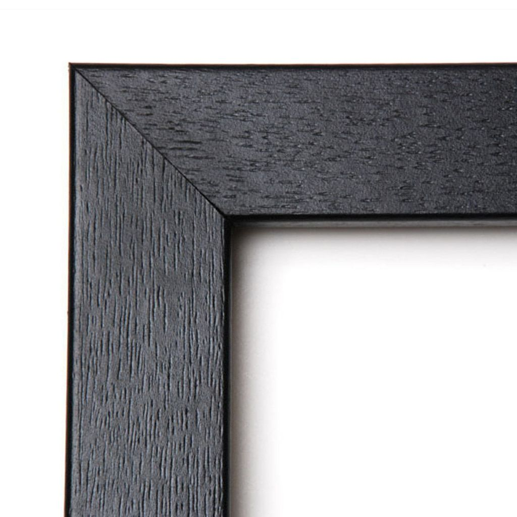 Gray Wolf Framed Wall Art