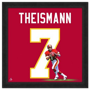 Washington Redskins Joe Theismann Framed Jersey Photo