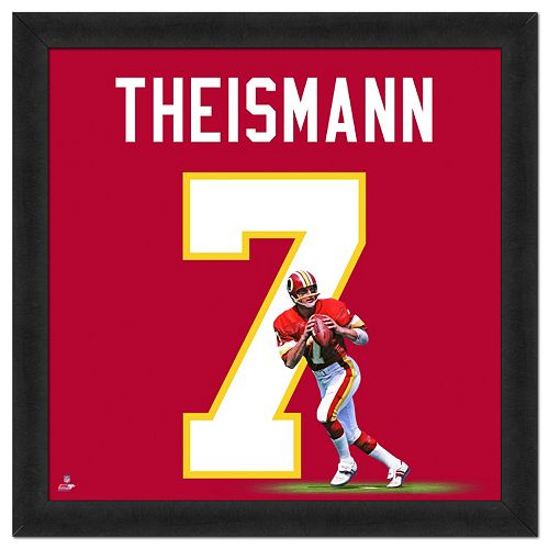 Washington Redskins Joe Theismann Framed Jersey Photo