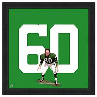 Philadelphia Eagles Chuck Bednarik Framed Jersey Photo
