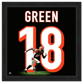 Cincinnati Bengals AJ Green Framed Jersey Photo