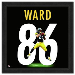 Pittsburgh Steelers Hines Ward Framed Jersey Photo