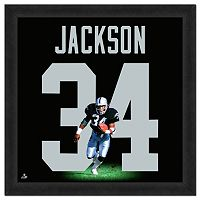 Los Angeles Raiders Bo Jackson Framed Jersey Photo