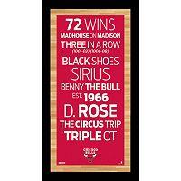 Steiner Sports Chicago Bulls 19