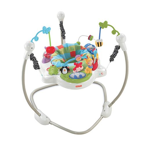 Fisher-Price Discover 'N Grow Jumperoo