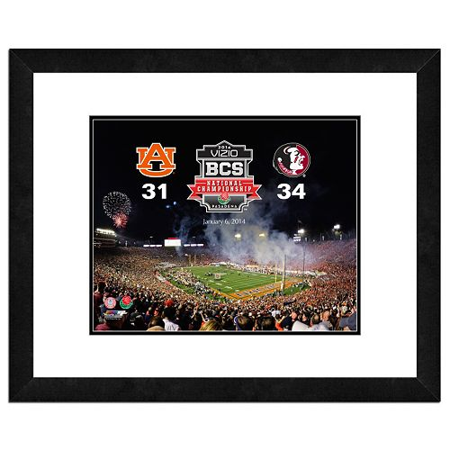 Florida State Seminoles 2013 BCS National Champions 18 x 22 Framed Photo