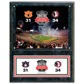 "Florida State Seminoles 2013 BCS National Champions 12"" x 15"" Plaque"