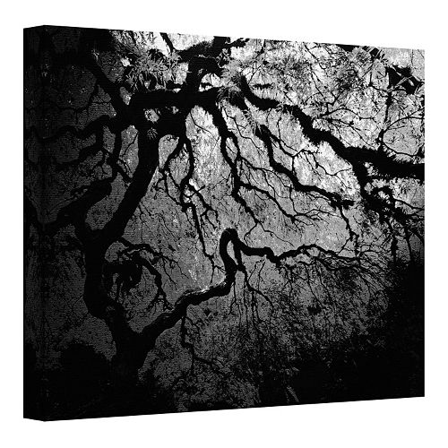 14'' x 18'' ''Japanese Dark Tree'' Canvas Wall Art by John Black