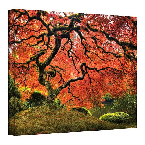 ''Japanese Tree'' 18'' x 24'' Light Canvas Wall Art by John Black