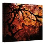14'' x 18'' ''Japanese Tree'' Canvas Wall Art by John Black