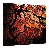 24'' x 32'' ''Japanese Tree'' Red Canvas Wall Art by John Black