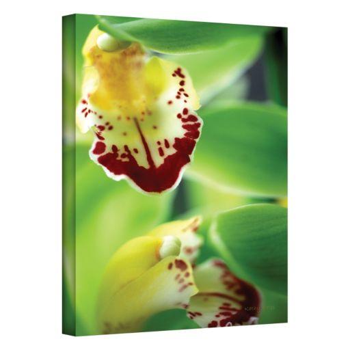 16'' x 24'' ''Cymbidium Sea Foam Emerald Orchid'' Canvas Wall Art by Kathy Yates
