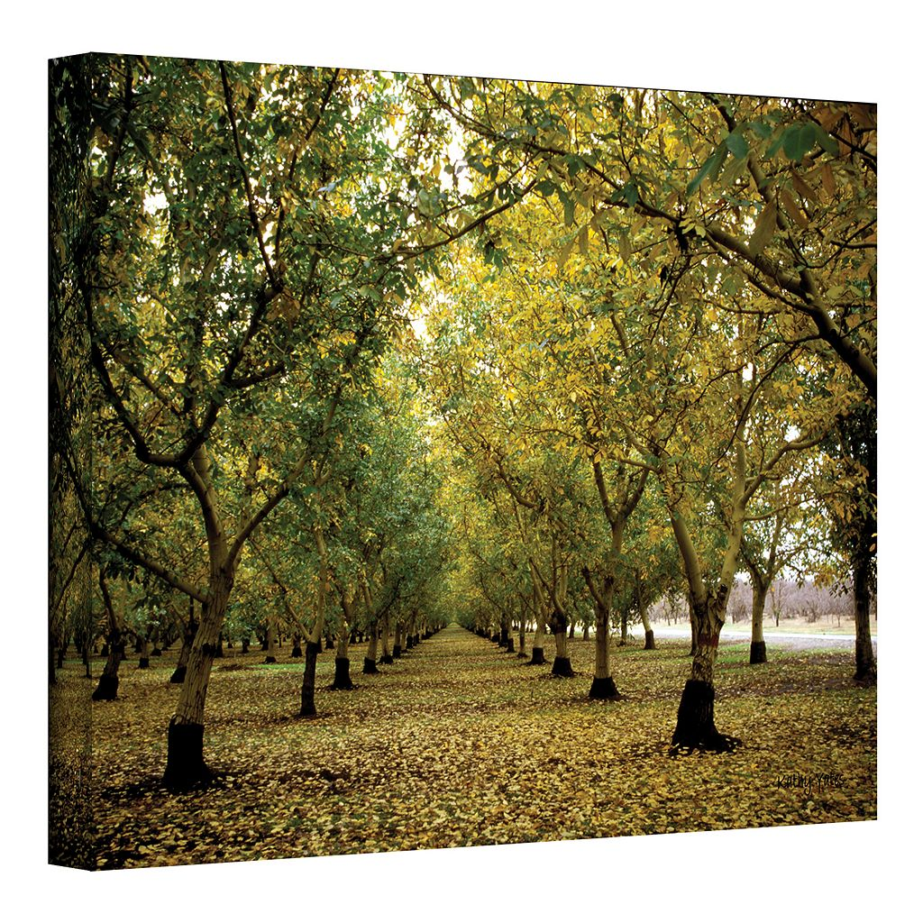 12'' x 18'' ''Fall Orchard'' Canvas Wall Art by Kathy Yates