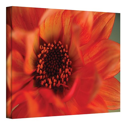 24'' x 36'' ''Fiery Dahlia'' Canvas Wall Art by Kathy Yates