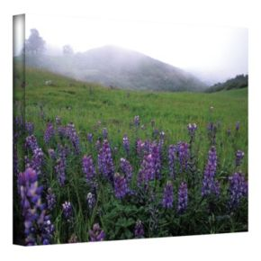 12'' x 18'' ''Figueroa Mountain with Fog'' Canvas Wall Art by Kathy Yates