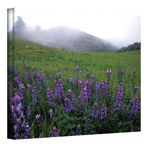 24'' x 36'' ''Figueroa Mountain with Fog'' Canvas Wall Art by Kathy Yates