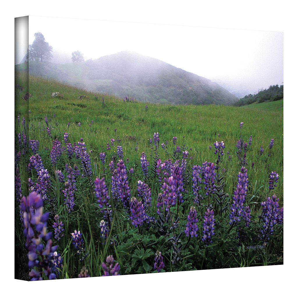 32'' x 48'' ''Figueroa Mountain with Fog'' Canvas Wall Art by Kathy Yates