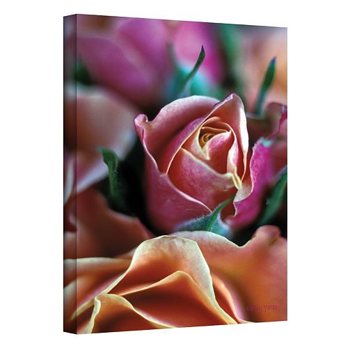 24'' x 16'' ''Mauve and Peach Roses'' Canvas Wall Art by Kathy Yates