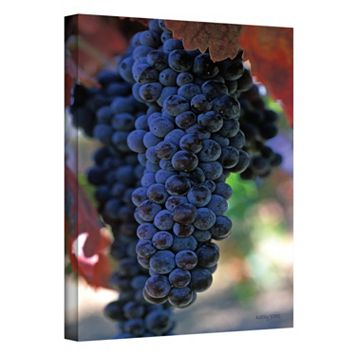 48'' x 32'' ''On the Vine'' Canvas Wall Art by Kathy Yates